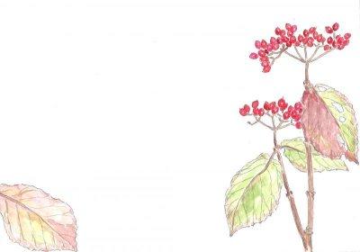 画像2: ポストカード(トトロの森の四季・秋冬)