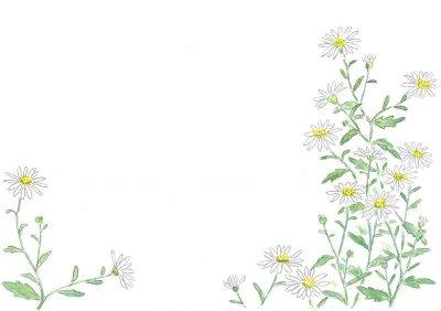 画像3: ポストカード(トトロの森の四季・秋冬)